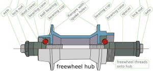 Freewheel Hub Cut Apart